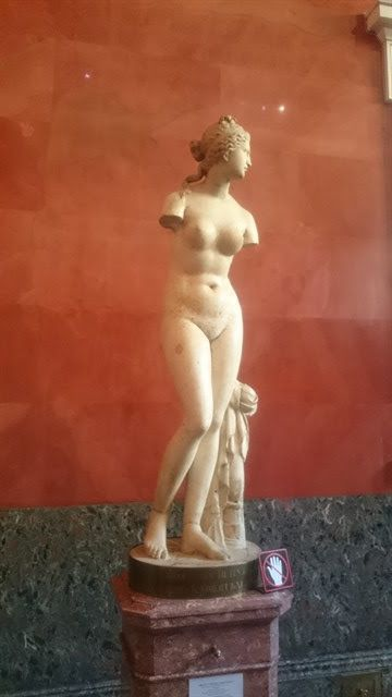 Venus Taoride