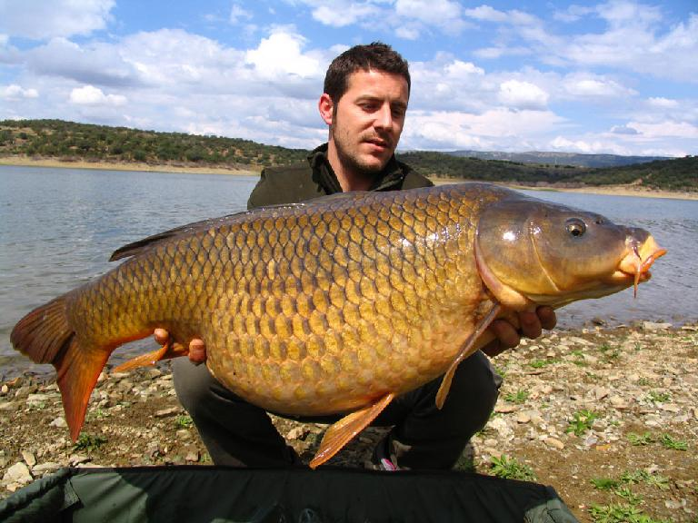 carpfishing embalse orellana