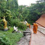 Wat Saket, la terraza de Bangkok, y rumbo a Chiang Mai