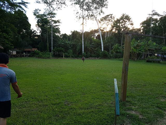 Campo de fútbol en la selva de Perú