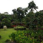 Nos adentramos en la selva amazónica peruana en Tambopata