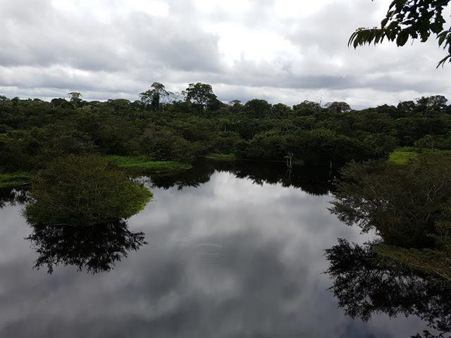 Lago Apu Víctor, en Eco Amazonia