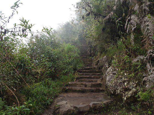 Parte de la subida a Huayna Picchu