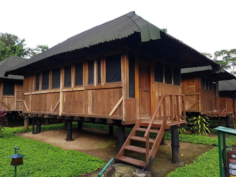 Alojamiento en la selva amazónica peruana