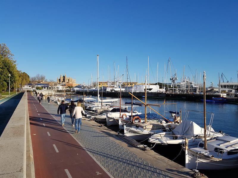 Zona del puerto, lugar que ver en Palma de Mallorca en un día