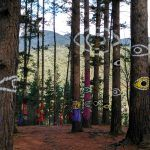 El Bosque de Oma, una obra de arte en plena naturaleza