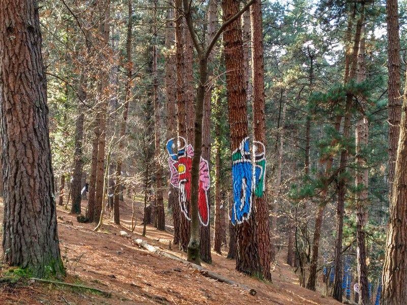 monigotes pintados en bosque de oma