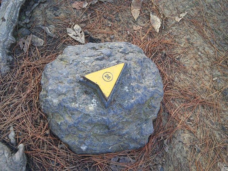 flecha amarilla indicativa de obra en el bosque de oma