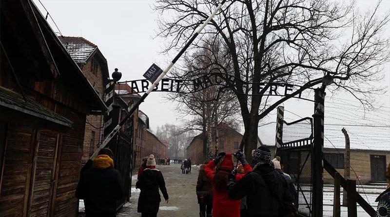 Visita guiada de Cracovia a Auschwitz