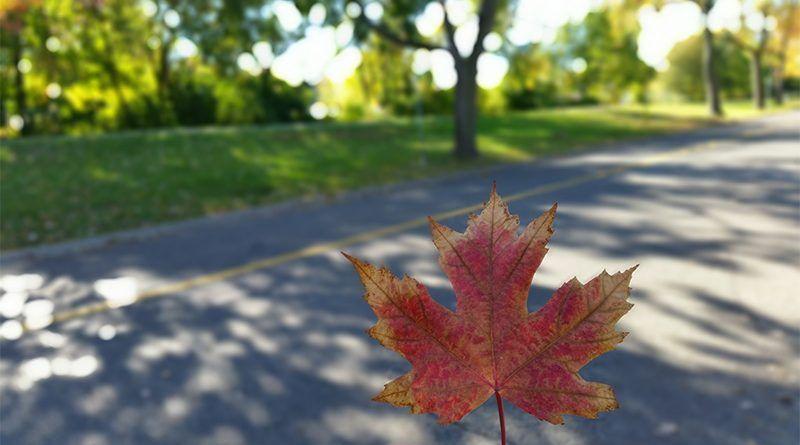 La eTA para viajara a Canadá es un requisito