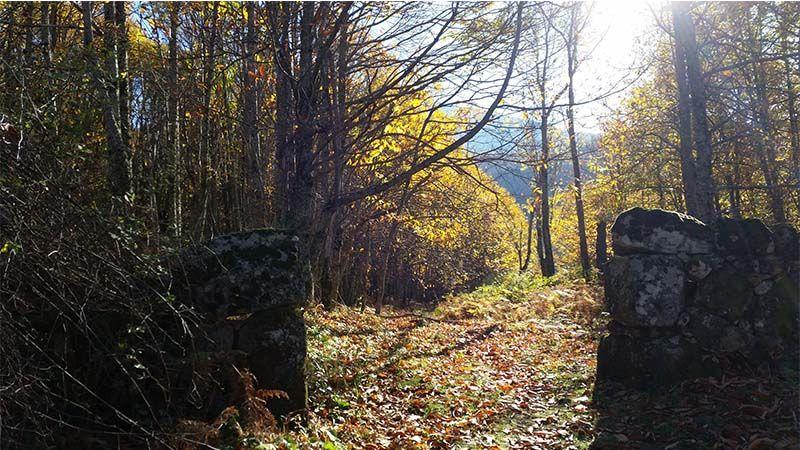 Valle del Ambroz, Extremadura en otoño