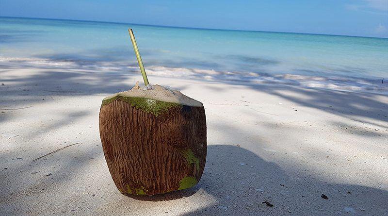Coco recién cortado en playa del Caribe en Cuba