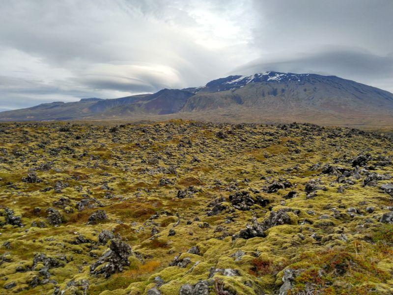 campos lava Snaefellsjokull