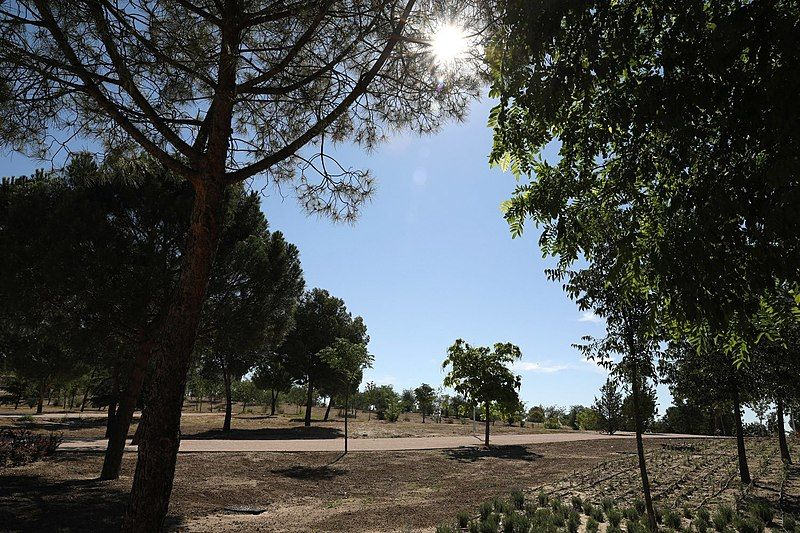 parque forestal fuente carrantona