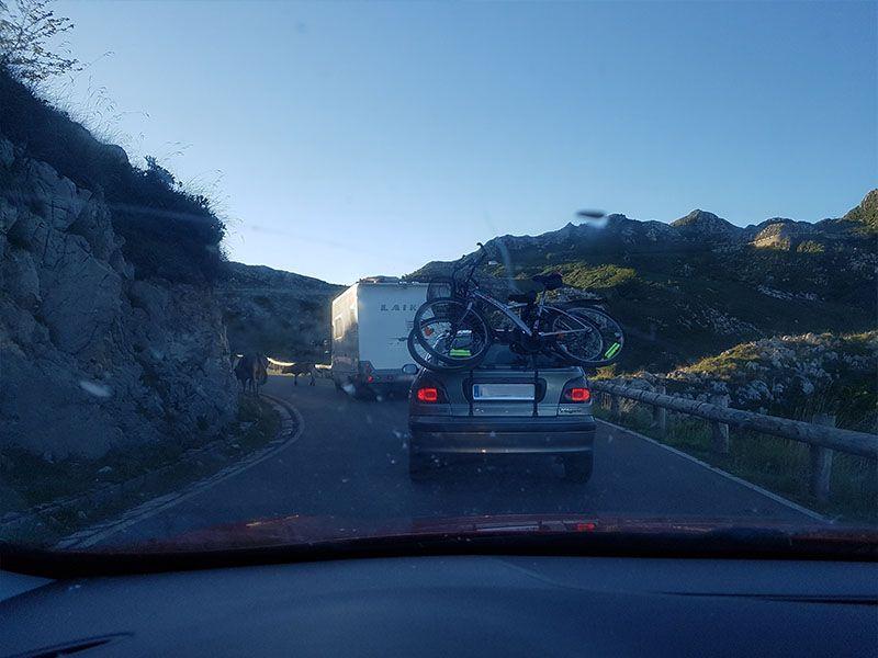 Subida en coche a los Lagos de Covadonga