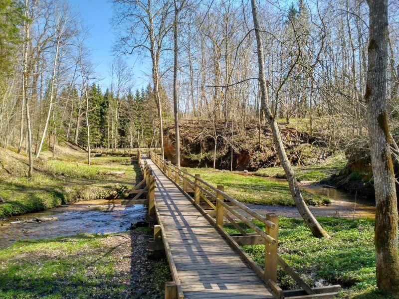 Excursión al Parque Nacional de Gauja desde Riga