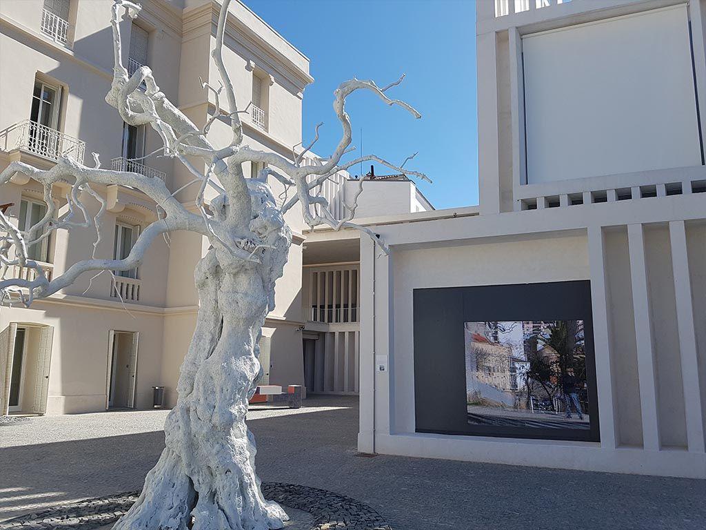 Museo Helga de Alvear, una visita que hacer en Cáceres en un día